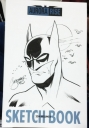 Denver_Comic_Con_2014_Batman_Head.jpg